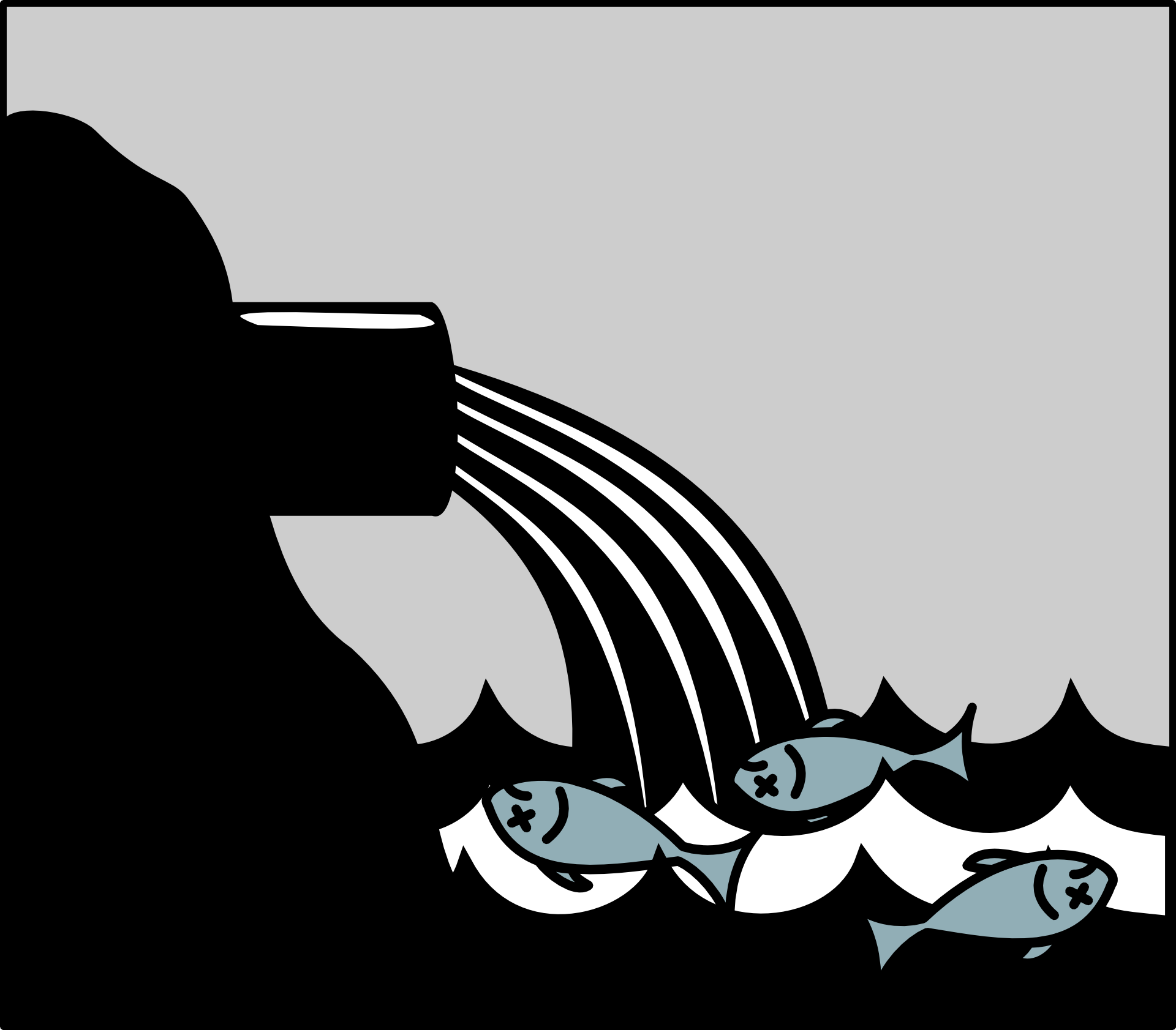 Toxic water, poisoned fish, mercury, heavy metal
